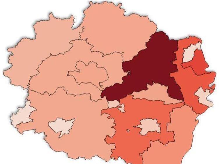 Corona Pfalz